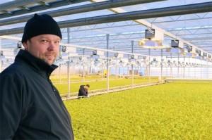 Ismo Lindroosin isoisä Uuno perusti aikoinaan Lindroosin puutarhan. Alussa vihanneksia kasvatettiin kasvilavoilla ja avomaalla. Puutarhan yhdestoista salaattilinja valmistui viime viikolla.