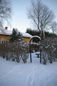 Kuva: Sari Järvinen