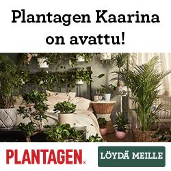 Plantagen